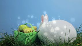Easter bunny and eggs. Digital composite of white easter bunny on the grass and easter eggs in a basket and white circular orbs moves in the screen stock footage