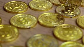 Gold feather coin. Digital currency physical litecoin coin. Gold background coins concept stock video
