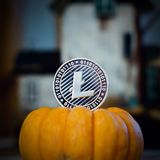 Litecoin halloween concept royalty free stock images