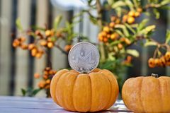 Monero halloween concept. royalty free stock photography