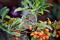 Ripple coin on tree stock images