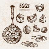 Digital  detailed line art cooking eggs. In frying pan hand drawn retro illustration collection set. Thin artistic pencil outline. Vintage ink flat, engraved Royalty Free Stock Photography