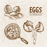 Digital  detailed line art cooking eggs. In frying pan hand drawn retro illustration collection set. Thin artistic pencil outline. Vintage ink flat, engraved Stock Photo