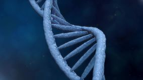 Digital DNA. Rotating DNA strands are assembled from individual elements. Genetic engineering scientific concept. stock video footage