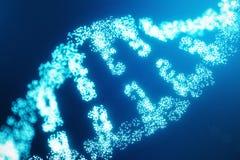 Digital DNAmolekyl, struktur Genom för digital kod för begrepp mänsklig DNAmolekyl med ändrade gener DNA som består royaltyfri illustrationer