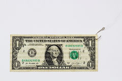 Digital dollar, zeros and ones, fishing hook, white background. Digital dollar covered with zeros and ones representing scam, hacking and phishing, cyber crime stock photo