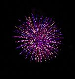 Digital firework. Firework illustration made by dots Stock Photos