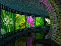 digital fototunnel royaltyfri illustrationer