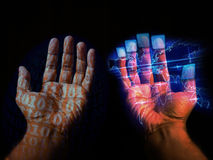 Digital Hands Royalty Free Stock Image