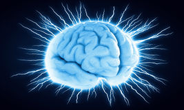Digital human brain. Concept of human intelligence with human brain on blue digital background stock photography