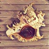 Digital illustration av det spiral skalet på trätabellen Naturlig kassa för kust i målningstil Royaltyfri Fotografi