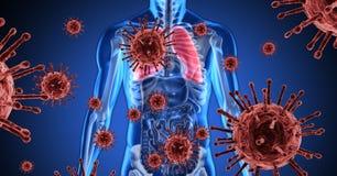 Digital illustration of a 3D human body model over macro Coronavirus Covid-19 cells floating