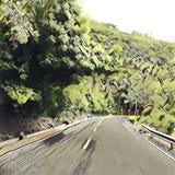 Digital-Illustration der Straßen-Kurve in der Tropeninsel-Reise lizenzfreie abbildung