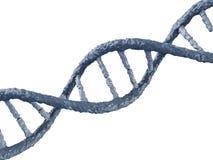 Digital illustration of a DNA Stock Images