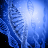 Digital illustration DNA structure Royalty Free Stock Images