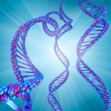 Digital-Illustration - DNA-Struktur Lizenzfreie Stockfotografie