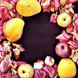 Digital illustration - flower and exotic fruit frame with place for text Royalty Free Stock Image