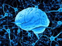 Blue human brain and neurons stock illustration
