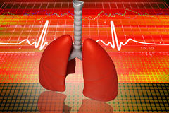 Digital illustration of lungs Royalty Free Stock Image