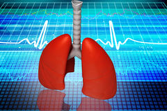Digital illustration of lungs Royalty Free Stock Photos
