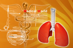 Digital illustration of lungs Royalty Free Stock Photography