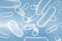 Digital image of blue bacteria 3d Stock Photo