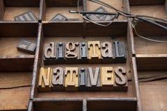 Digital infödingar royaltyfria foton