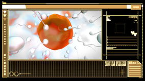 Digital interface showing egg cell fertilization. Medical digital interface showing egg cell fertilization in orange and black stock illustration