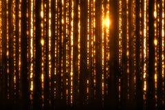 Digital jul blänker guld- partikelremsor för gnistor som flödar på svart bakgrund, feriexmas-händelse Royaltyfria Bilder