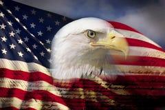 Digital komposit: Den amerikanska skalliga örnen och flaggan förses med underlag med handskriften av USA-konstitutionen Arkivfoto