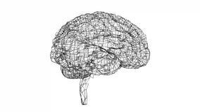 Digital lines create human brain shape stock video