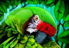 Digital målning för papegoja Royaltyfri Bild