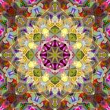 Digital-Malerei-Zusammenfassung bunte Blumen-Mandala Background vektor abbildung