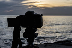 Digital Nature Photography. Nature photography with a digital camera tripod Royalty Free Stock Photo