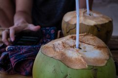 Digital nomad checking email while drinking a coconut.  Stock Image