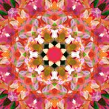 Digital Painting Abstract Colorful Floral Mandala Background Stock Illustration
