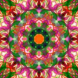 Digital Painting Abstract Colorful Floral Mandala Background Vector Illustration