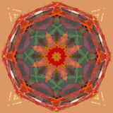 Digital Painting Beautiful Abstract Colorful Floral Mandala Background Royalty Free Stock Photos