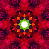Digital Painting Beautiful Abstract Colorful Floral Mandala Background Stock Images