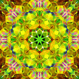 Digital Painting Beautiful Abstract Colorful Floral Mandala Background Stock Image