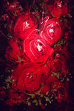 Digital Painting A bouquet of red roses Royalty Free Stock Images