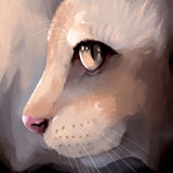 Digital painting cat face closeup Stock Photo