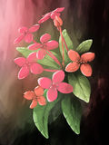 Digital painting flower ixora leaf pink Stock Photo