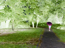 Digital painting illustration art. Girl with red umbrella walking through the forest. Stock Images
