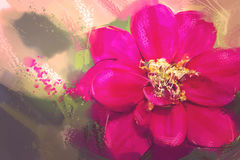 Digital Painting style oil Red Zinnia Royalty Free Stock Images