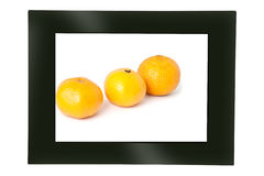 Digital photo frame Stock Photo