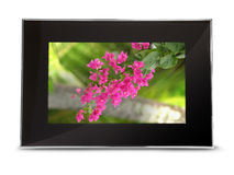 Digital Picture Frame with clipping path Stock Images