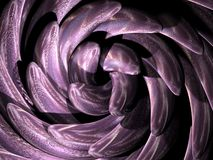 Digital purple swirl Stock Images