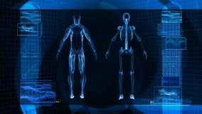 Digital röntgenstrålebildläsning av människokroppen (HD) stock illustrationer