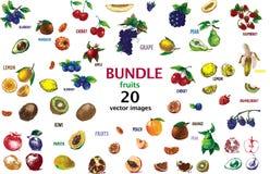 Digital raster detailed line art color Stock Image
